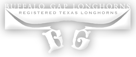Buffalo Gap Longhorns Logo